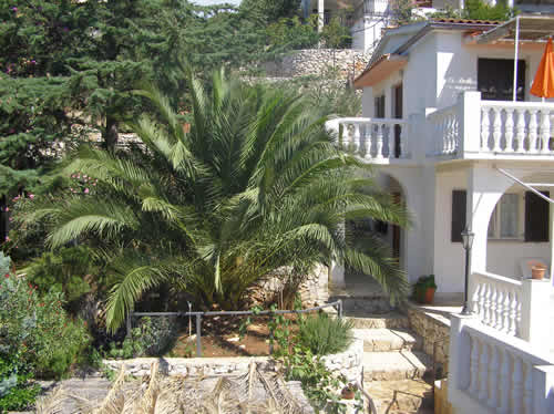 House to rent in Croatia with grill possiblity and with palm backyard